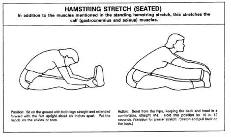 FLEX-hamstring-stretch-seated