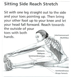 side reach stretch