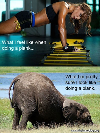 Look What Planking I I What Actually I Look When And Plank